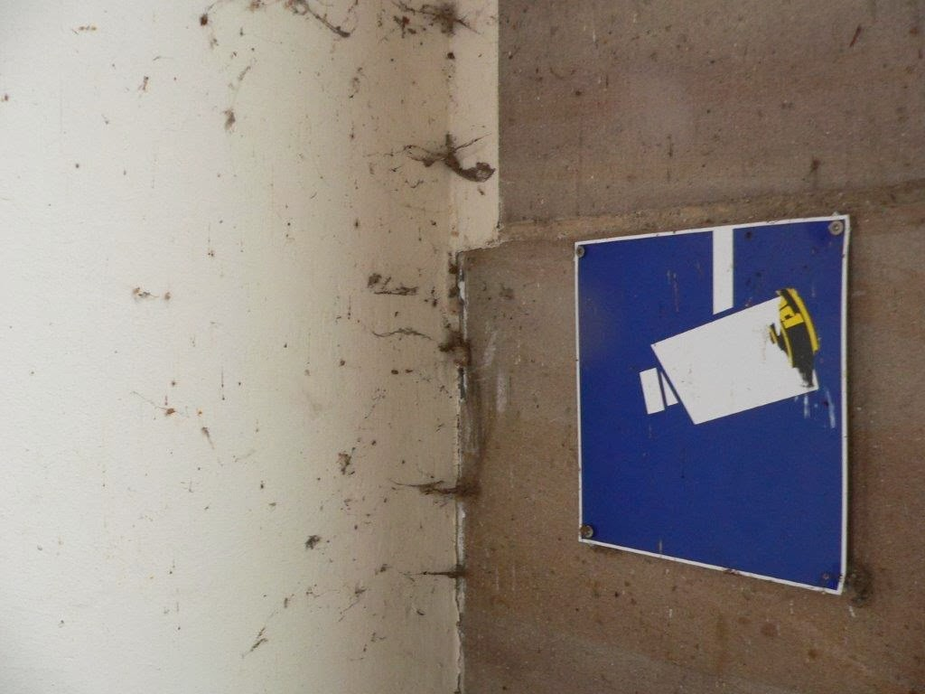 Staumauer Schild Kamera