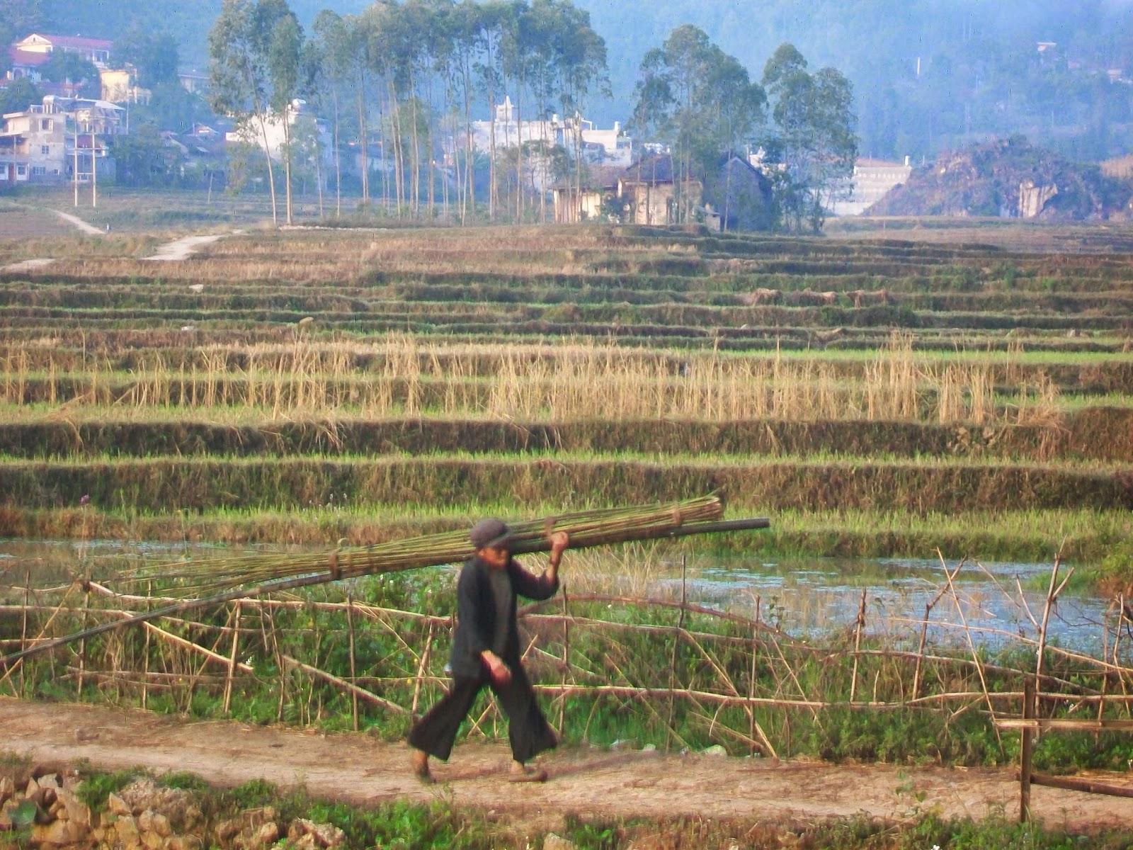Pour un voyage au Vietnam solidaire