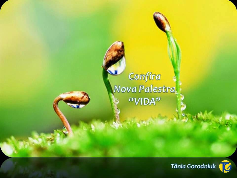 """Nova Palestra """"VIDA"""""""