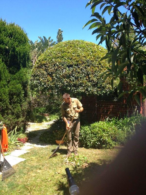 Teix jardiner a mantenimiento de jardines for Mantenimiento de jardines