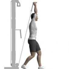 Tricep Workouts Top Ten Indian Bodybuilders