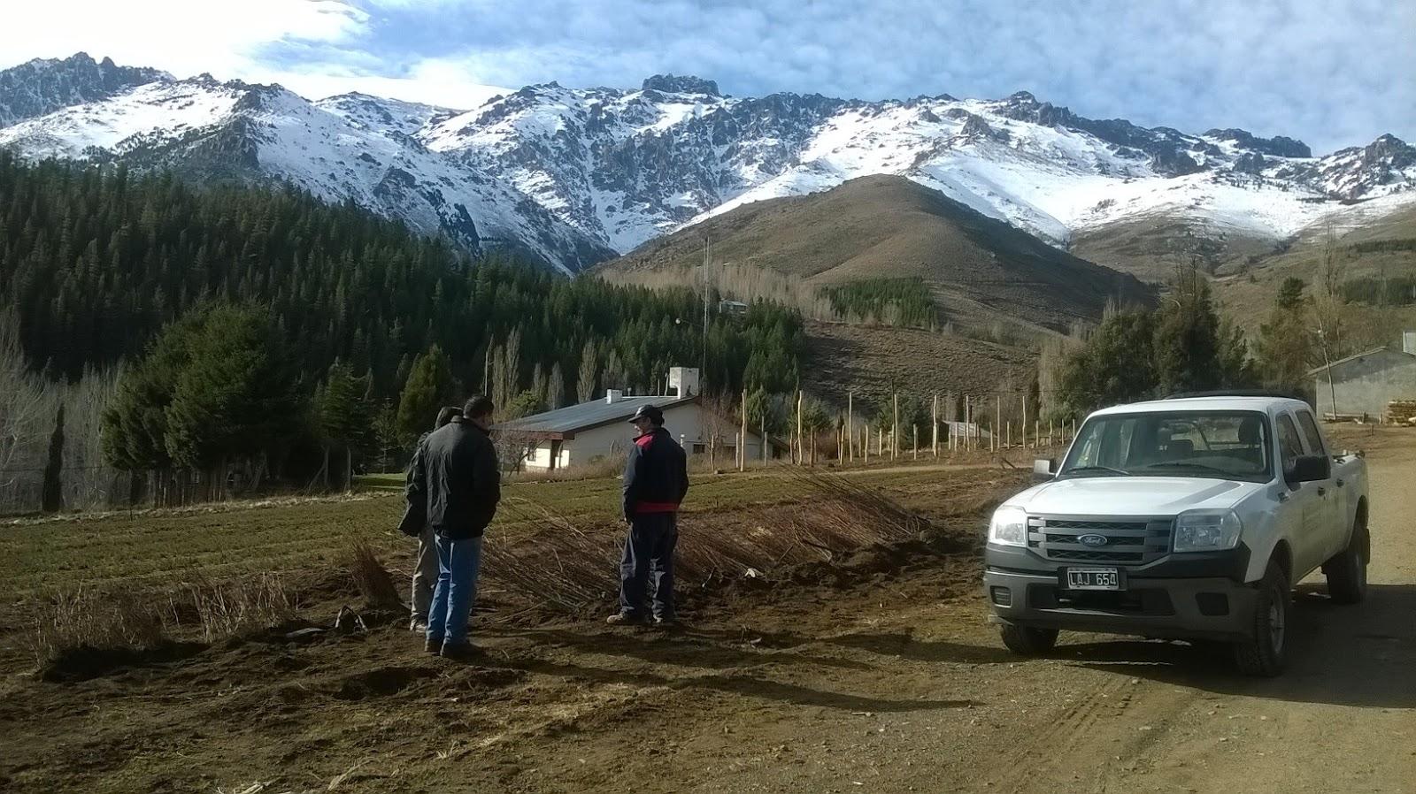 Patagonia andina forestal recorrida y asistencia t cnica for Viveros en neuquen