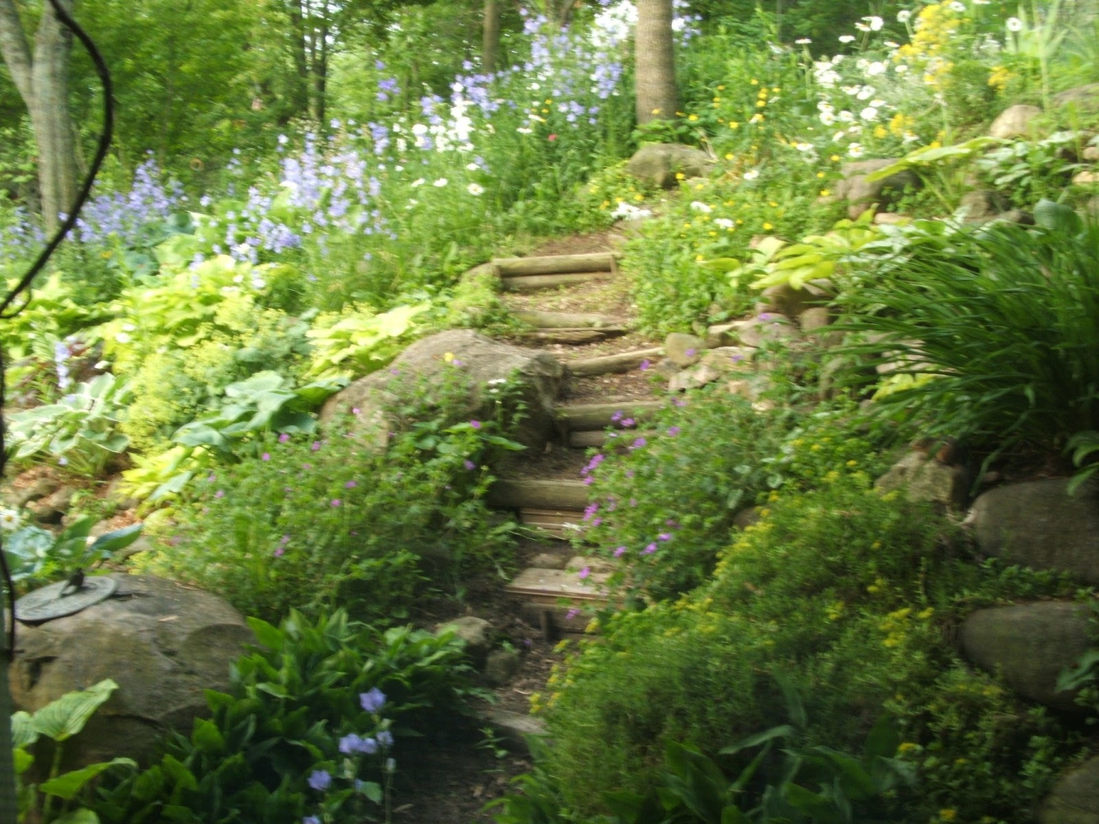 garden path going steps going steep garden rock garden garden paths