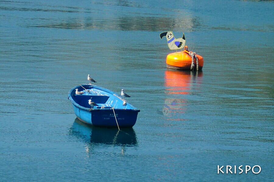 gaviotas encima de barca y dibujo de pájaro encima de boya en hondarribia