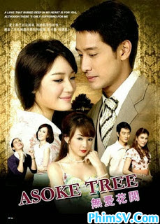 Yêu Giùm Cô Chủ - Asoke Tree