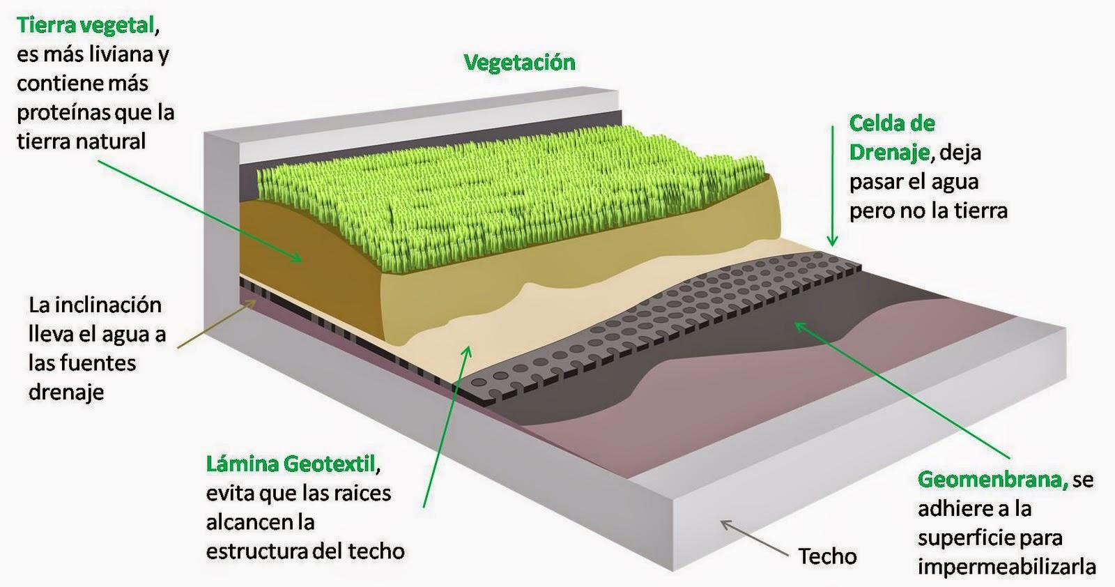 como lo son horizontal como techo y tambin se encuentra de manera vertical como lo son las paredes o los llamados jardines verticales