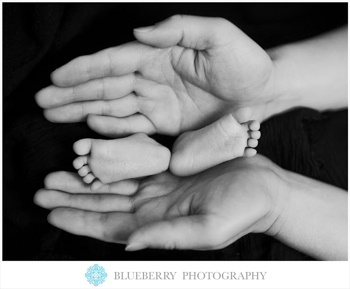 San Francisco Bay Area Newborn Baby Photography Session