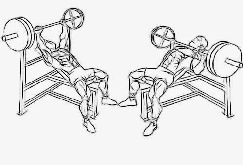 Proper Incline Bench Press Form The Incline Bench Press Works