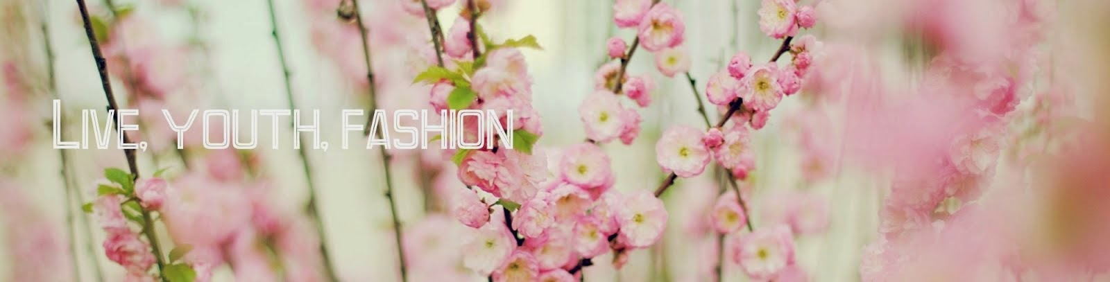 Life, youth, fashion