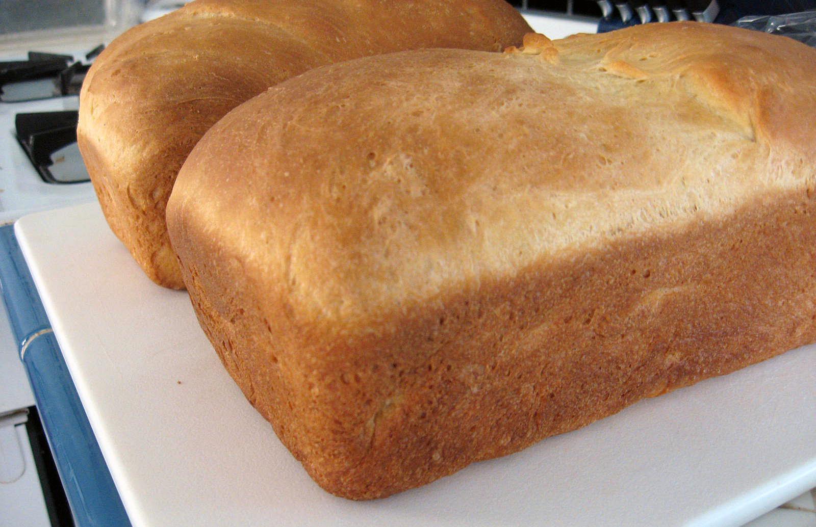 Homemade Egg Bread for Texas Toast by freshfromthe.com