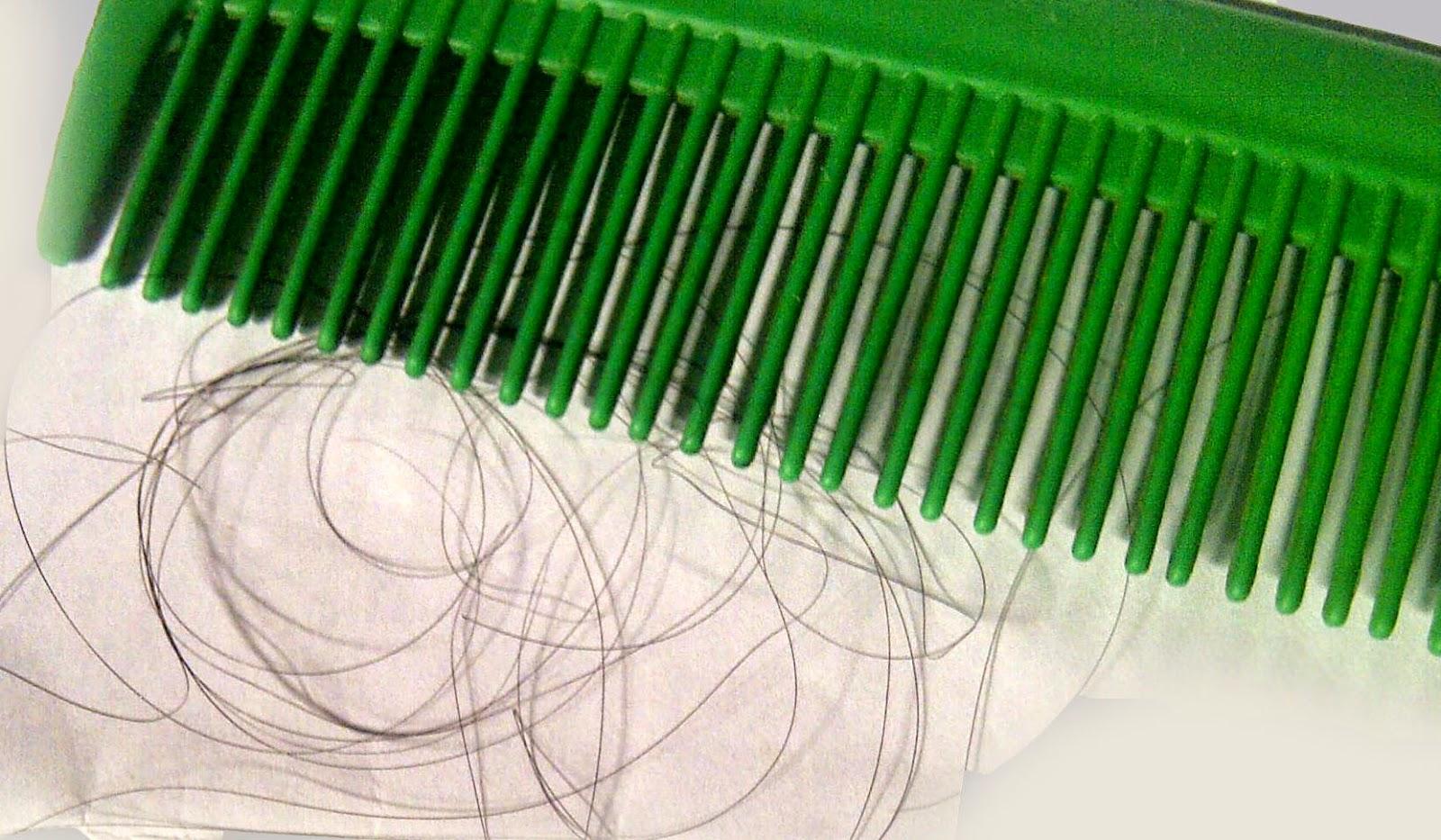 Cara Mengobati Rambut Rontok Secara Alami