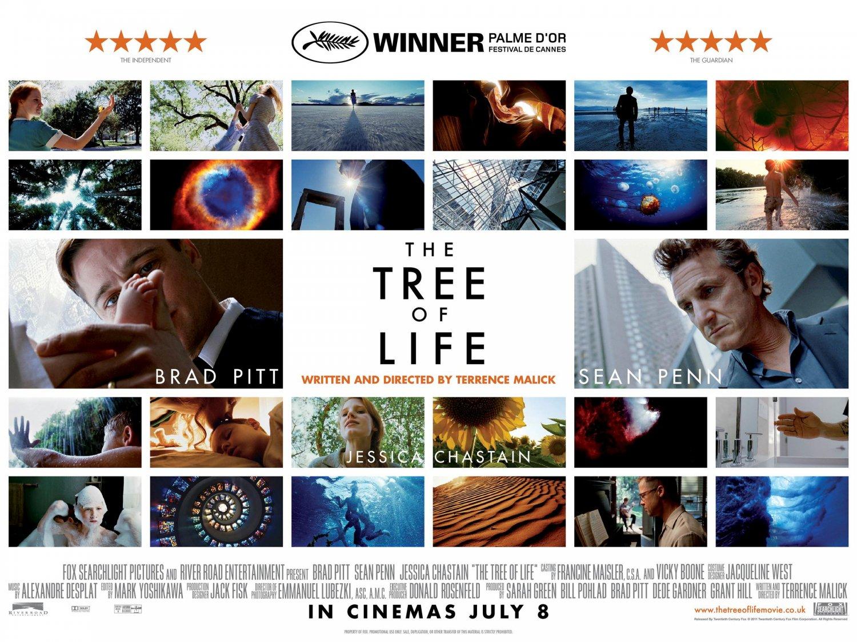 http://2.bp.blogspot.com/-wKIH3TV_XAA/TnxpqFir0PI/AAAAAAAAFo0/OGa4eMx53lA/s1600/tree_of_life_ver7_xlg.jpg