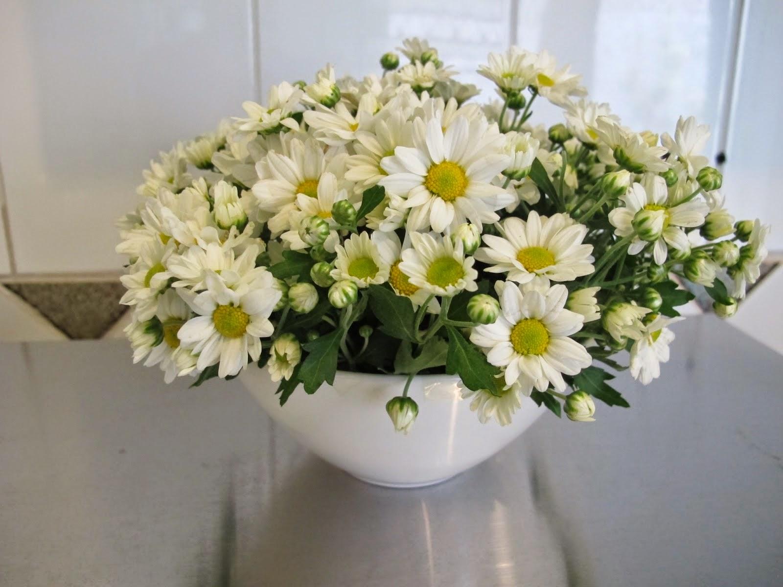 Flores e Arranjos Apissol Contagem Empresa Facebook