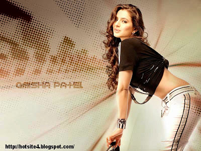 Amish Patel 2014 New Wallpaper - Amisha Patel hd wallpaper - hot amisha patel photo , bikini amisha patel