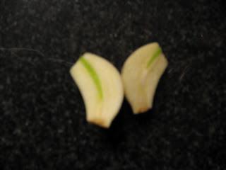 fresh peeled and halved garlic clove