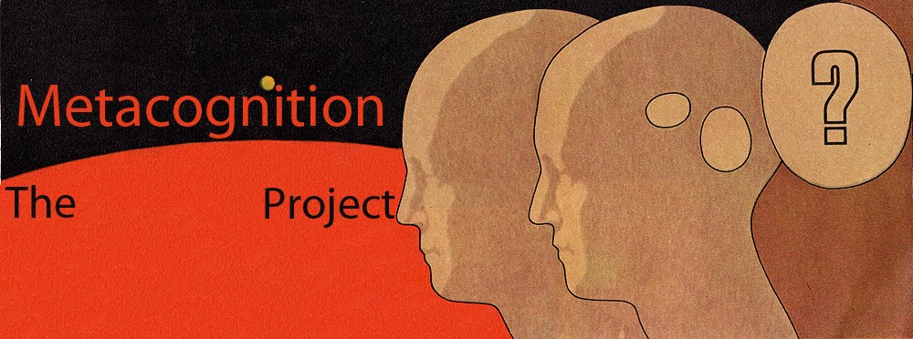 The Metacognition Project