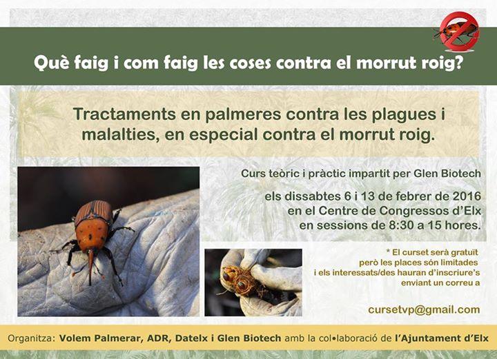 Plagues del Palmerar