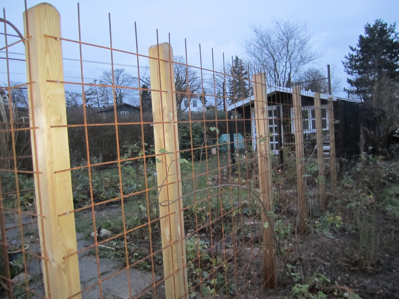 Nettes lille have: december 2011