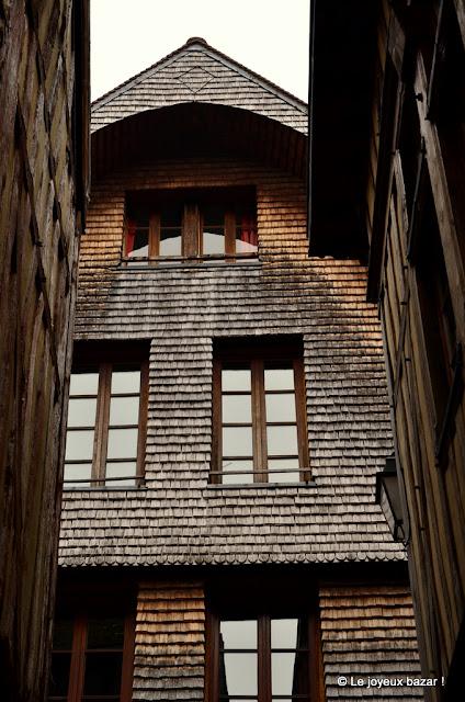 Troyes - centre historiques- écailles de bois
