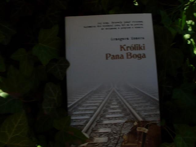 http://www.dobraliteratura.pl/zapowiedz/185/kroliki_pana_boga.html