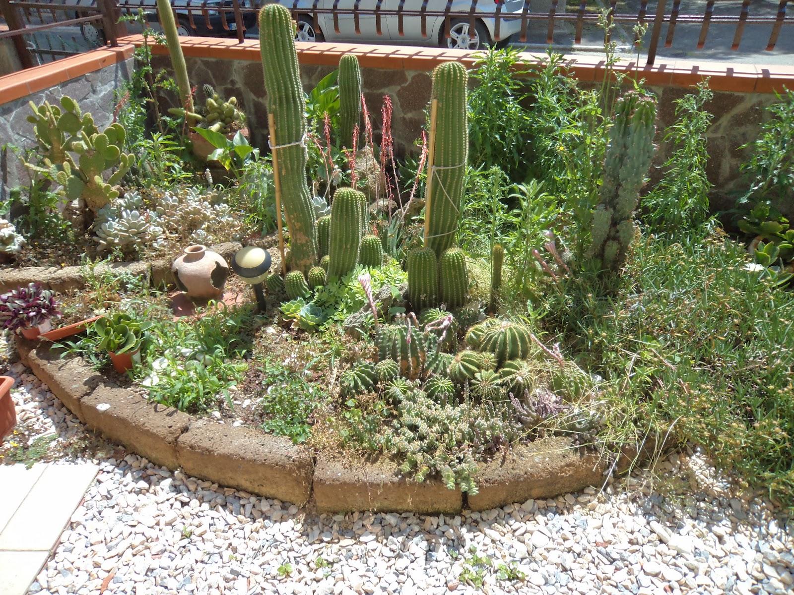 I giardini di carlo e letizia giardino di piante grasse - Immagini giardini rocciosi ...