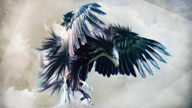 eagle image, eagle picture, eagle photo hd, eagle background, eagle desktop pc wallpaper