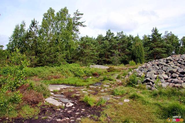 Site UNESCO de Tanum en Suède