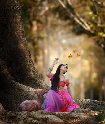 Alicia en el país de las maravillas - Wonderland