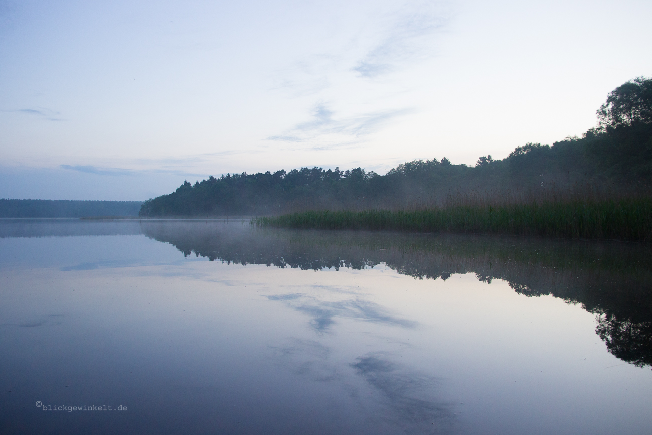 Morgennebel am See