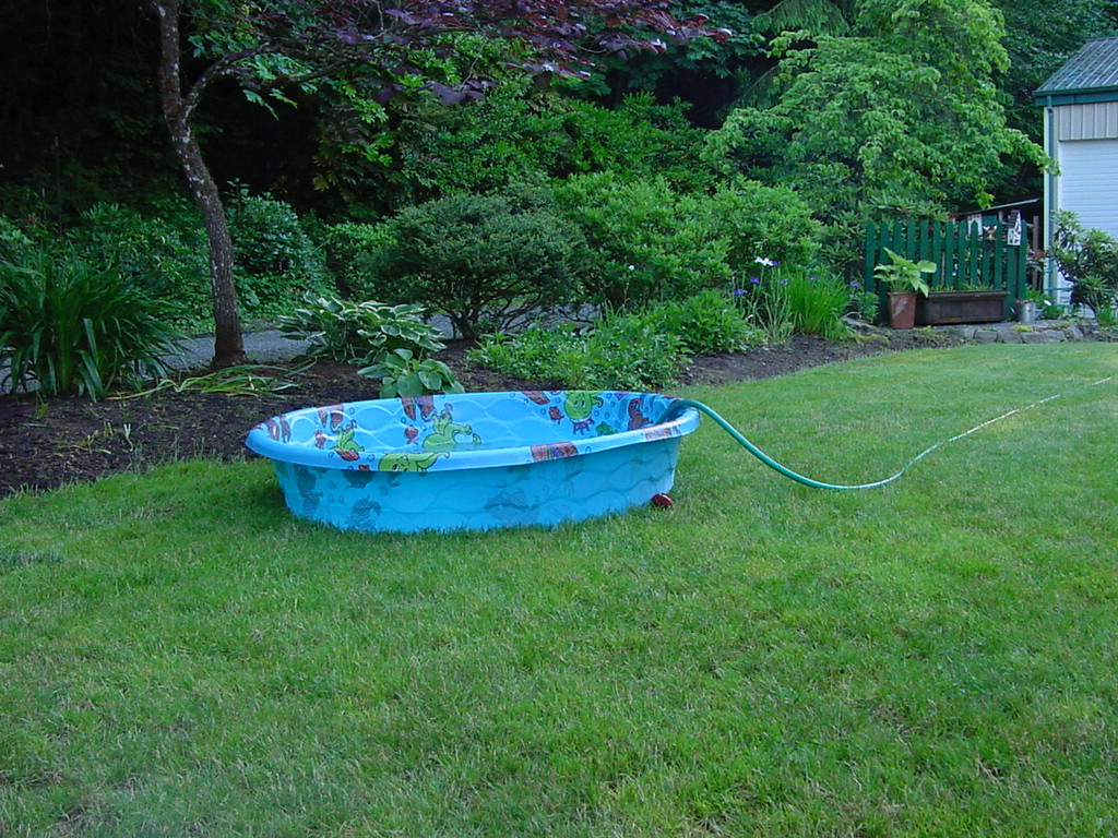 Gardening with Wyatt: June 2011