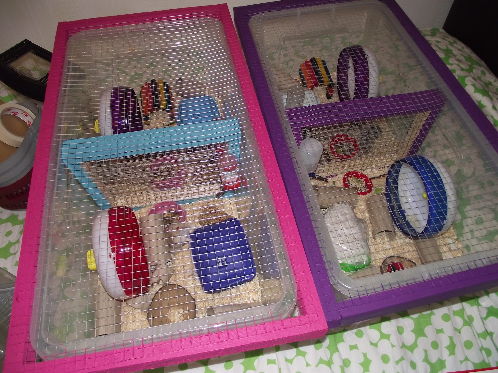 Homemade Bin Cages & The Whiskerteers: Homemade Bin Cages