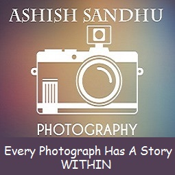Photography | Ashish Sandhu | Photo Blog From India | The Photovlog and the Photoblog
