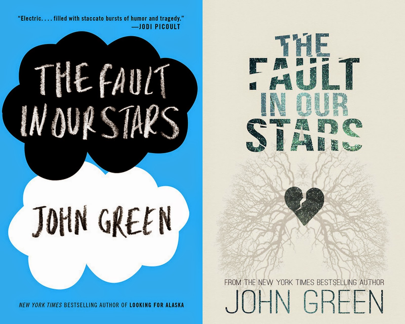 book review the fault in our The fault in our stars is a fictional book intended for young adults published in 2012 february 1, 2012, the film rights to the novel were optioned to fox 2000.
