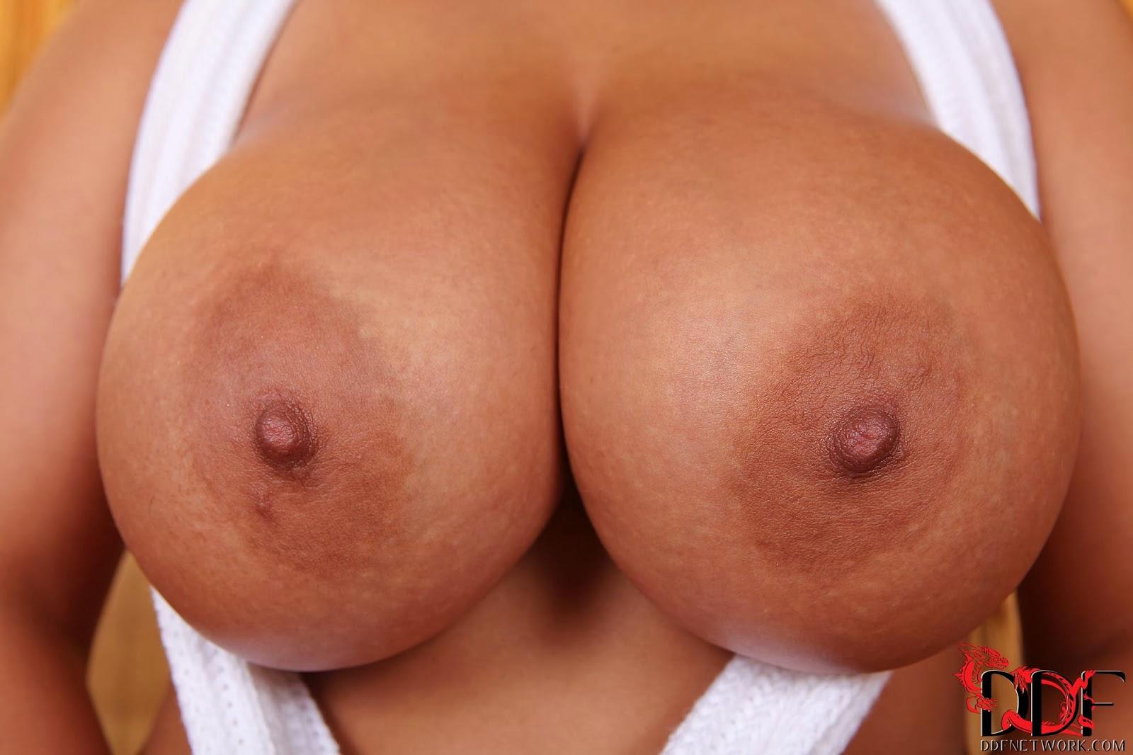 black tits close up