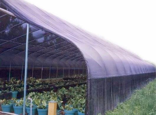Northica reporte visita 3 invernaderos - Telas para sombra ...