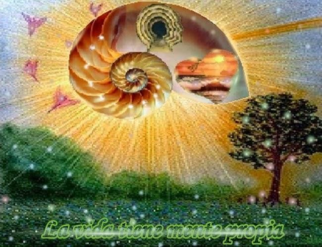 Querido, en los términos del mundo, no dispones de la suficiente información para avanzar, sin embargo, la vida tiene mente propia.