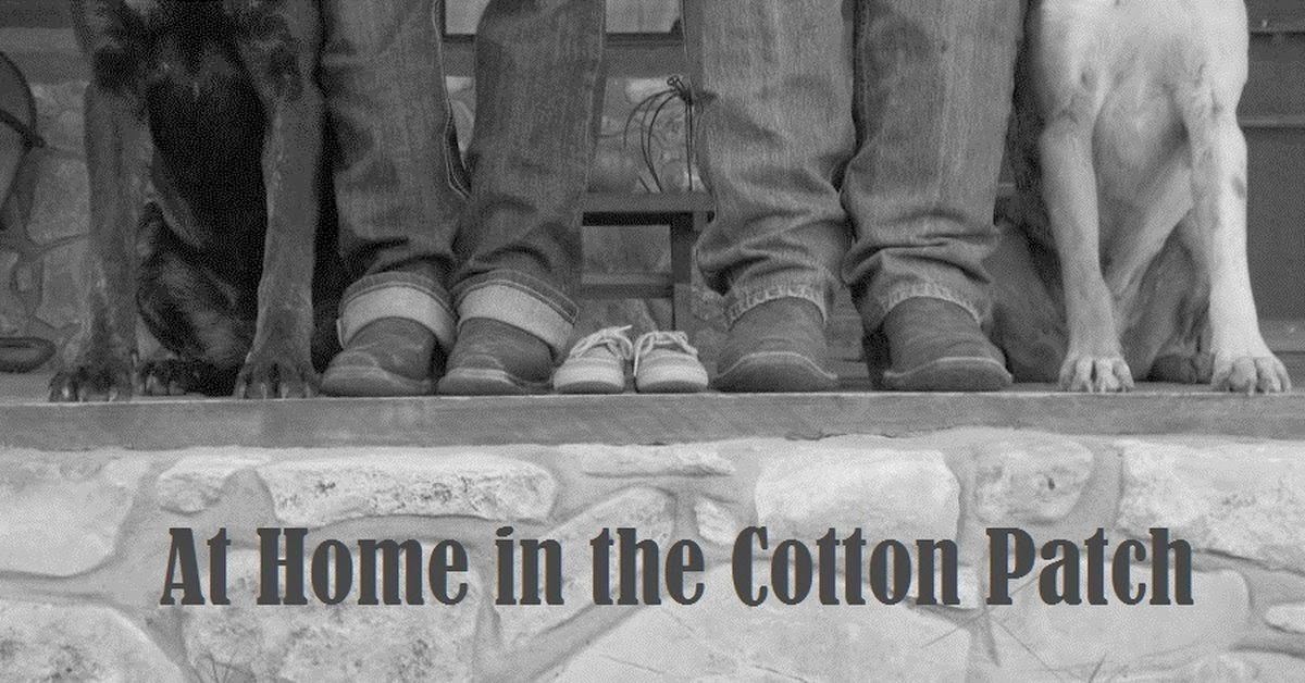 At Home in the Cotton Patch