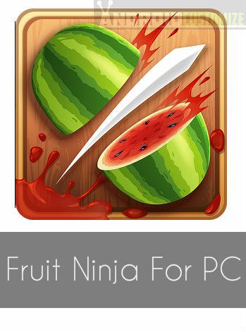 Fruit Ninja For PC