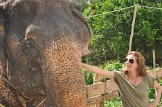 con los elefantes en krabi