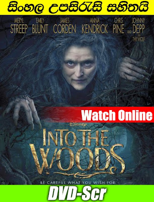 Into the Woods 2014 Full movie watch online free