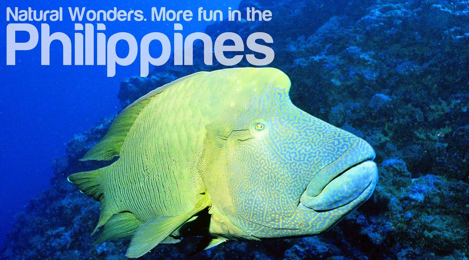 forex philippines facebook banner