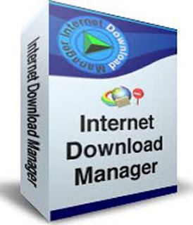 Internet download manager