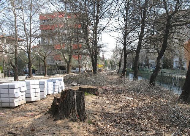 Τόνοι μάρμαρο στη θέση των κομμένων δέντρων