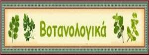 ΒΟΤΑΝΟΛΟΓΙΚΑ