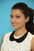 Hamsa Nandini Glamorous photos-thumbnail-14