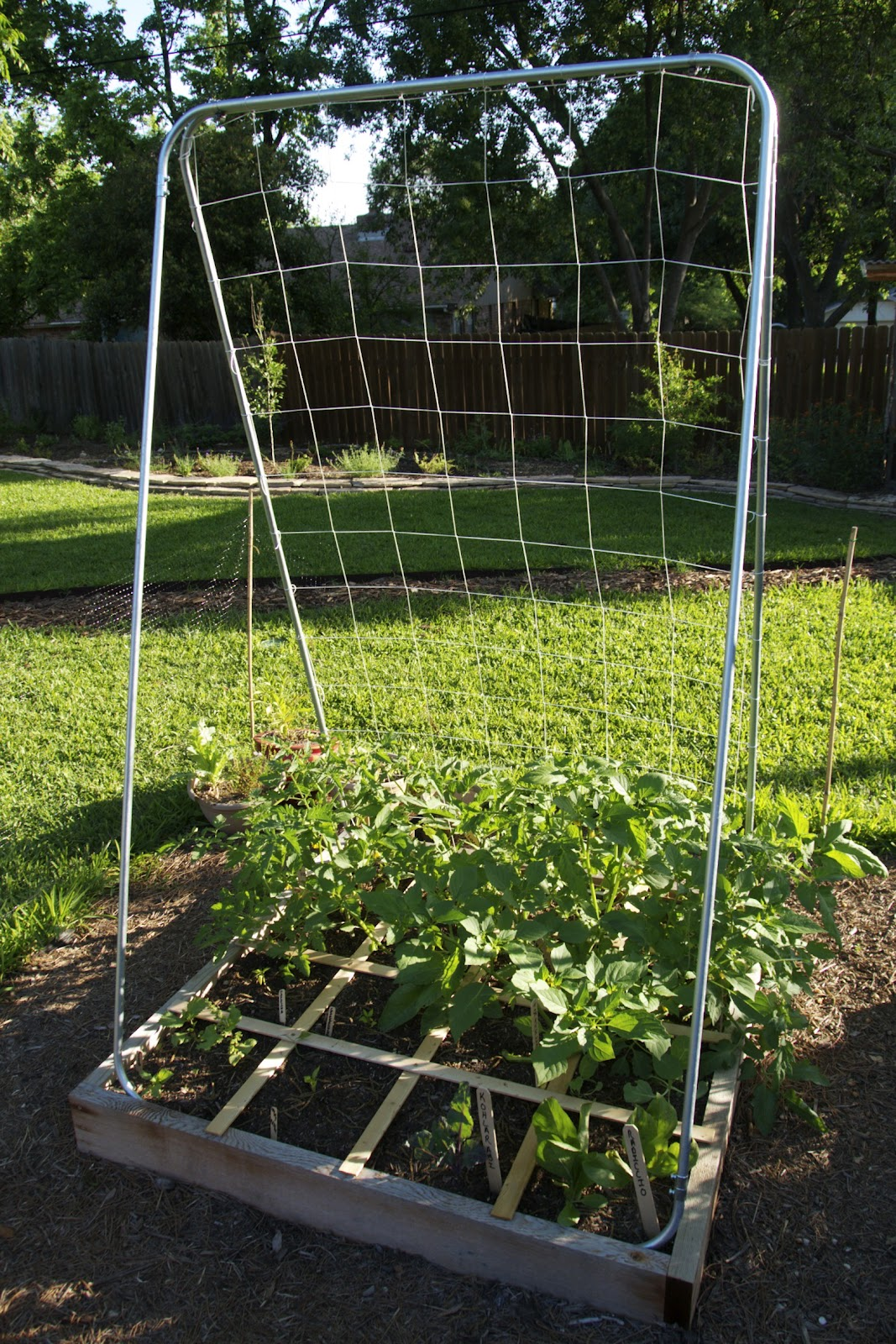 The Amazing $15 Trellis | From Our Garden