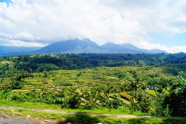 Vistas desde las carreteras de Bali