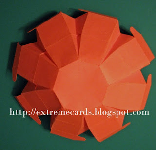 apple box folds