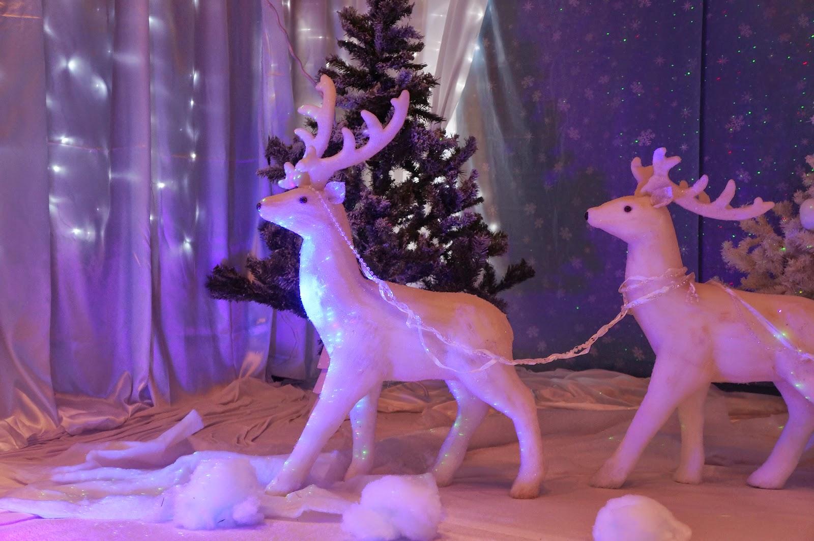 #742C9F Decorateur Vitrines Noel/Festidomi: DECORATIONS VITRINES  5483 decorations de noel pour entreprise 1600x1063 px @ aertt.com