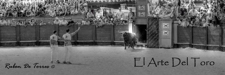 el arte del toro